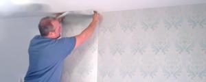 Strippable Non-Woven Wallpaper